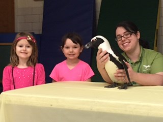The Aviary visits Kindergarten