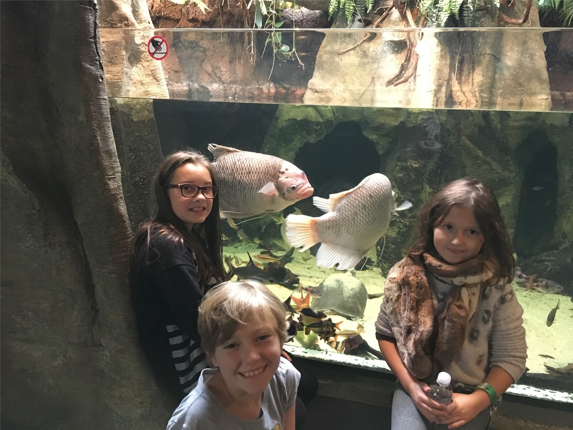 Fourth grade visits the zoo!