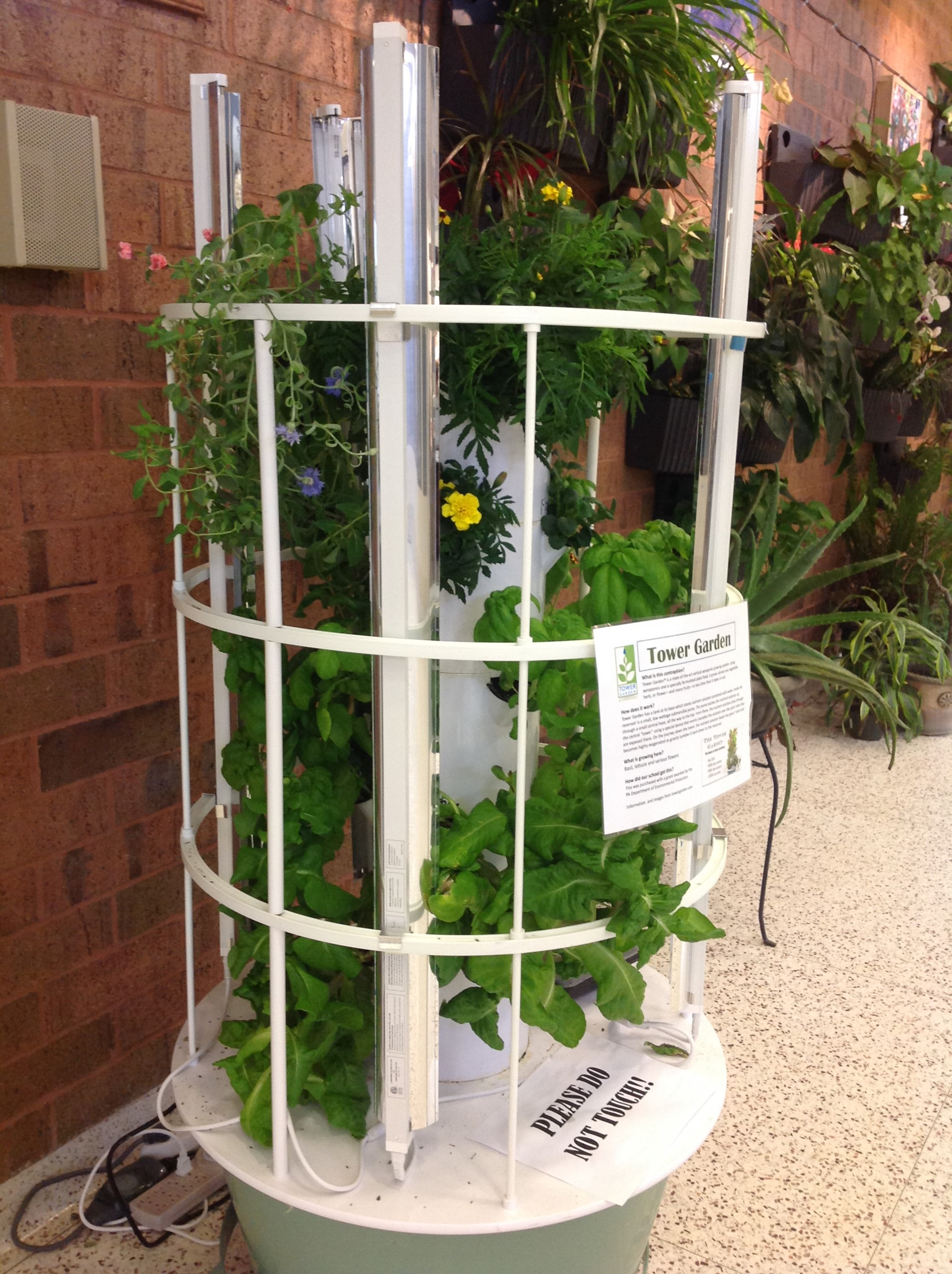 Tower Garden in the School Lobby