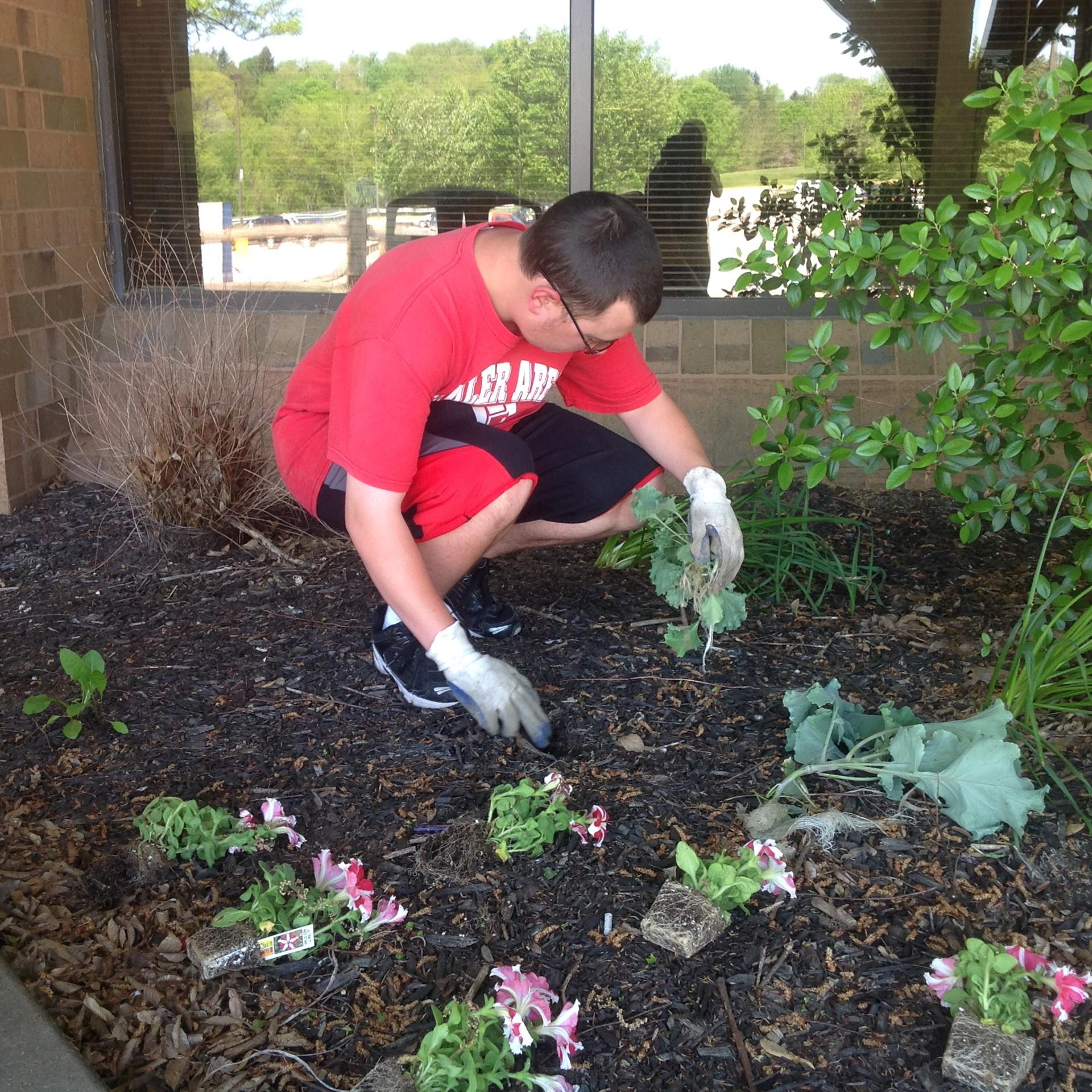Planting in front of the High School