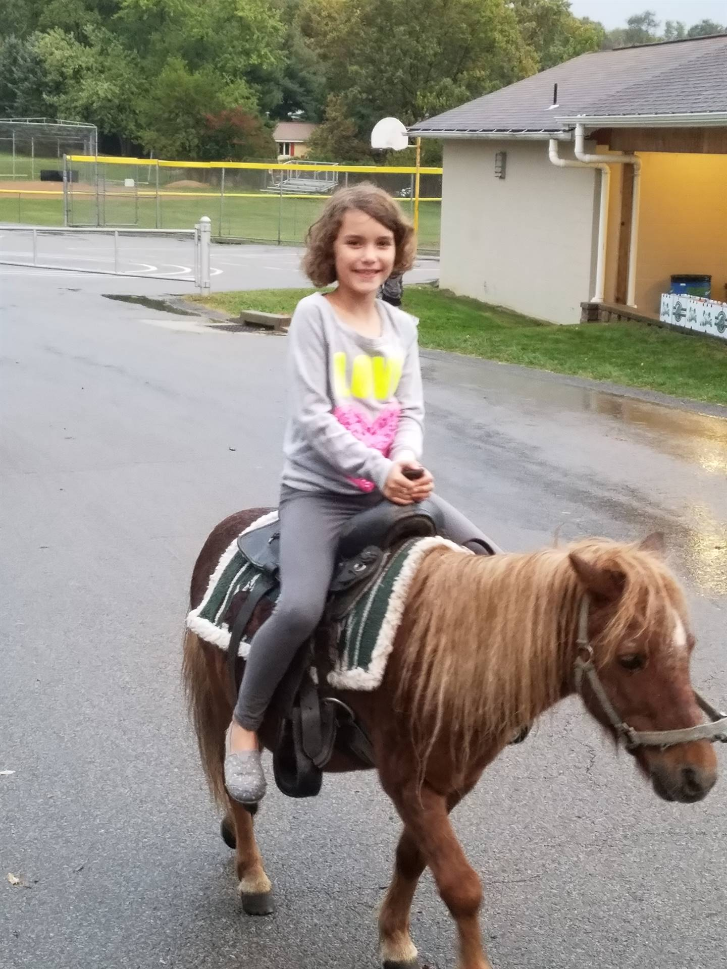 Pony rides at the Fall Festival