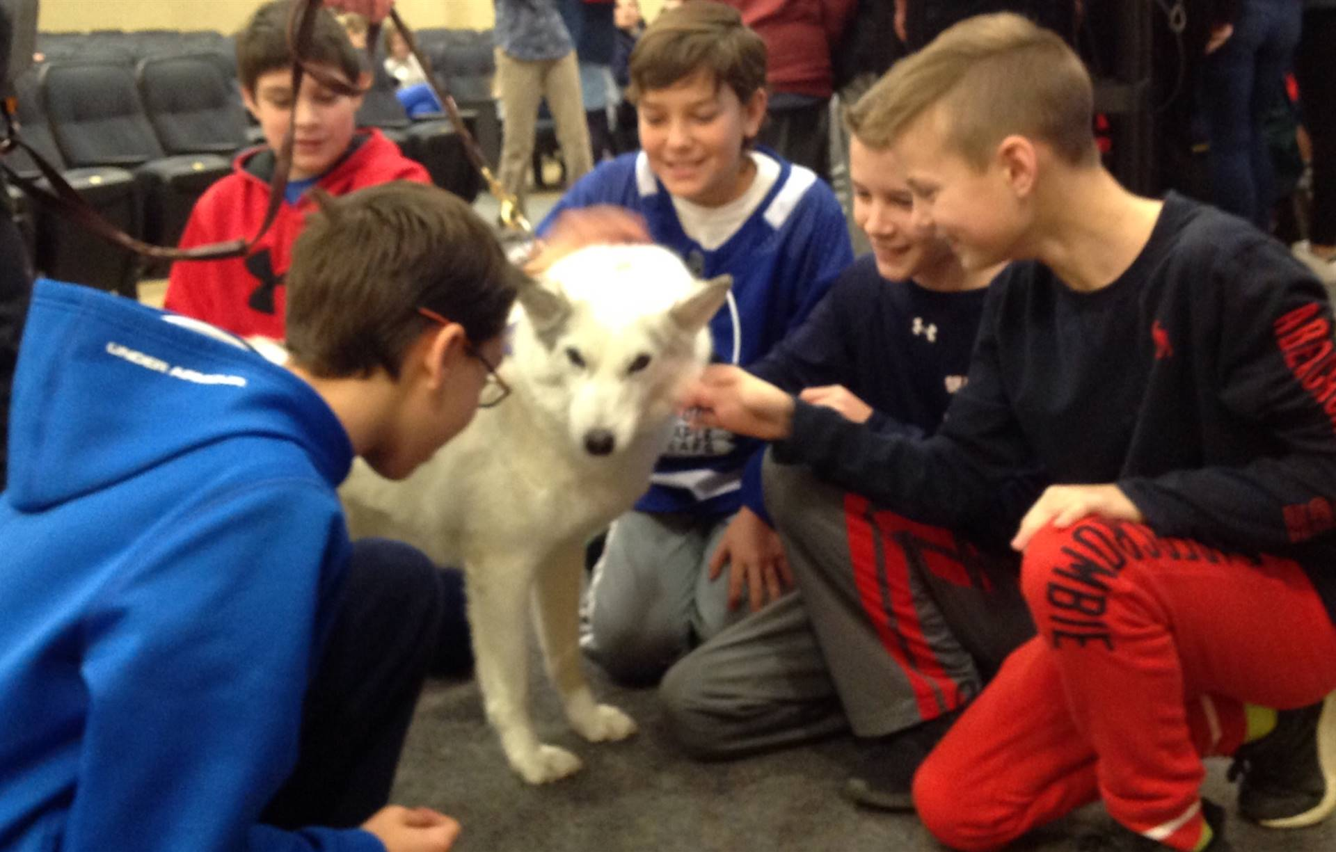 Five 6th grade boys petting a snow dog