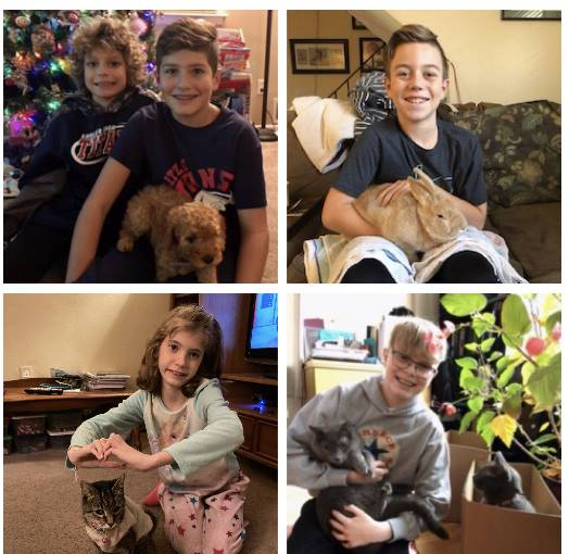 Students with their Pets