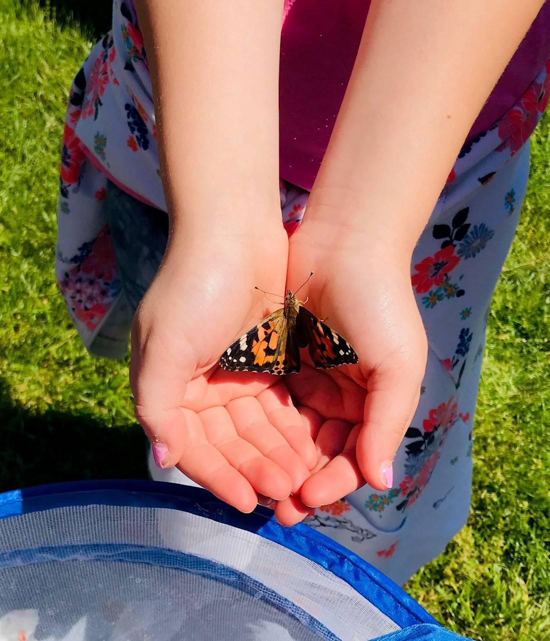 Mrs. Zillweger and 2B released their butterflies